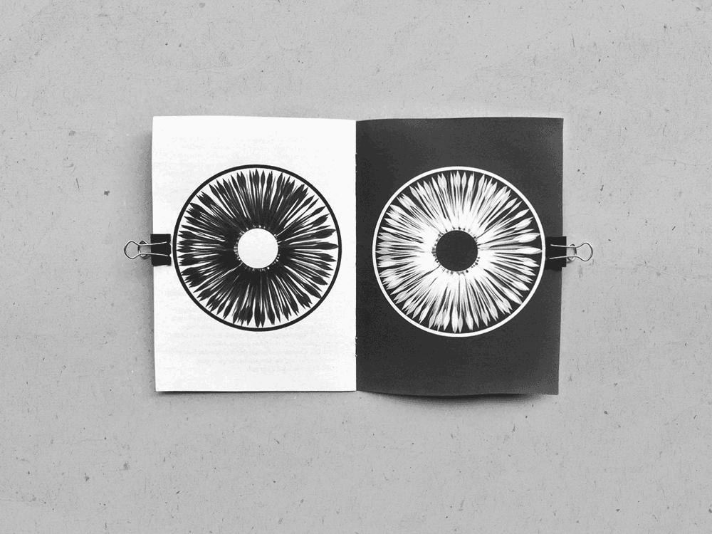2015_fanscene_eye2